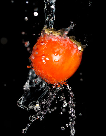 ebenaceae: persimmon in water on a black background