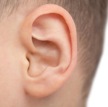男性の耳のクローズ アップ