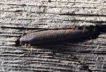 rusty nail: viejo clavo oxidado en una pizarra