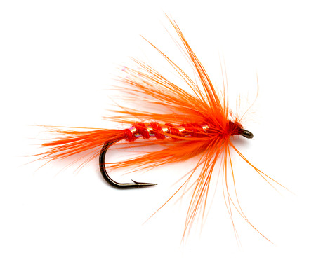 Fluffy fly fishing hook isolated on white Stock Photo