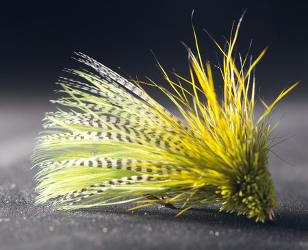 fishing lure: fly for fishing Stock Photo
