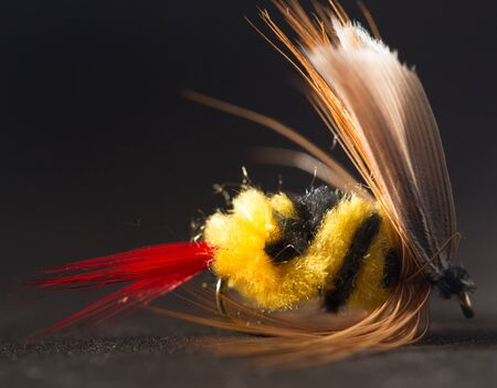 salmon leaping: fly for fishing Stock Photo