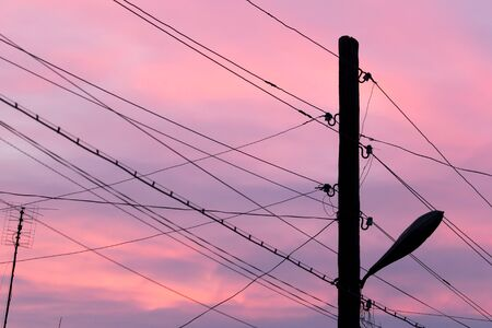 electric wires: electric wires at sunset Stock Photo