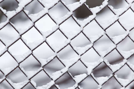 Close-up of barbwire covered by snow photo