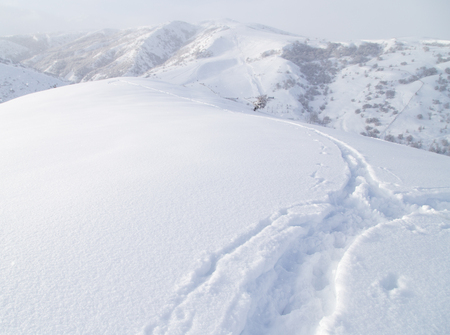 wintersport: climbers trail in the snow as a background