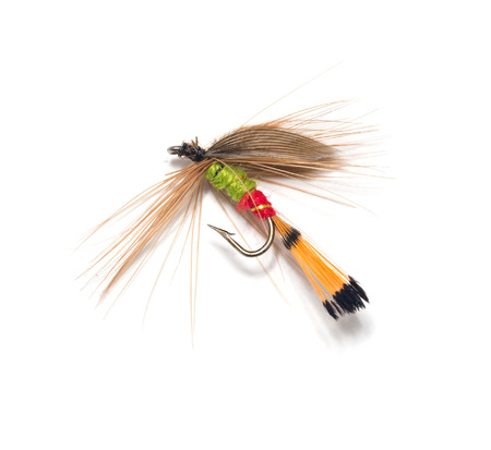 fishhook: fly for fishing on white background