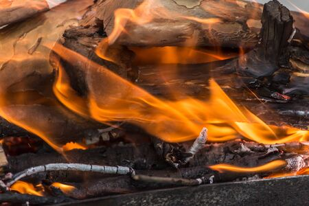 benzine: fire wood Stock Photo