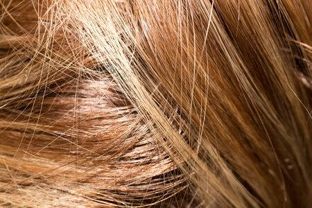 background of human hair