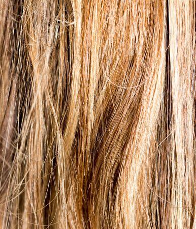人間の髪の毛: 人間の毛髪の背景