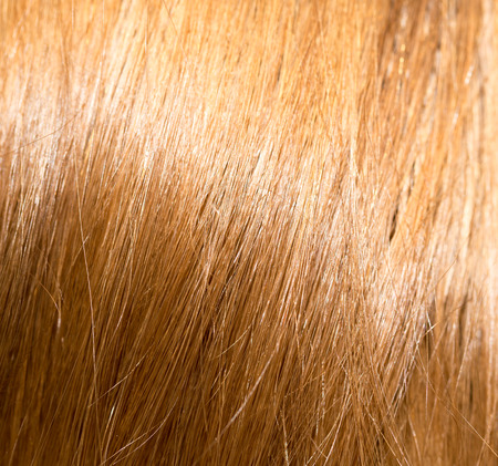 blonde streaks: background of hair