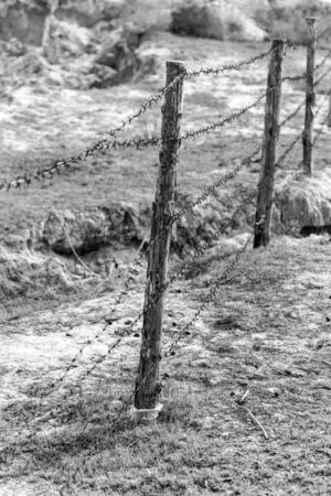 barbed wire on nature photo