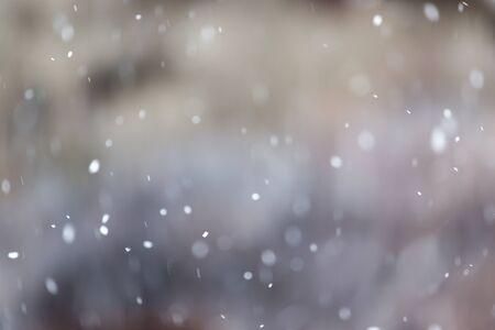 snow falls: Snow falls on the nature Stock Photo
