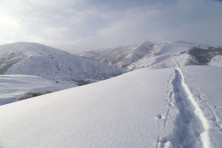 ski traces: Trail in the snow in the mountains
