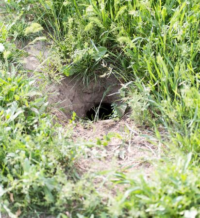 under control: Hole in the ground
