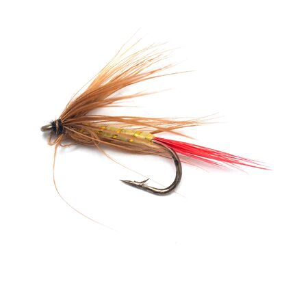 tackles: fly for fishing on white background