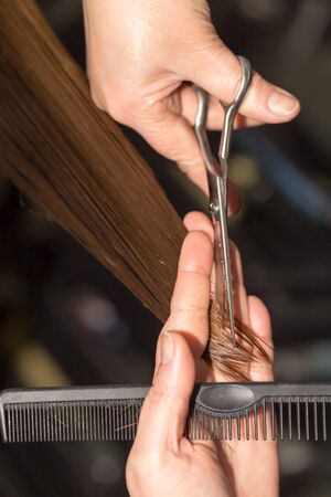 beauty parlour: cutting hair in a beauty salon