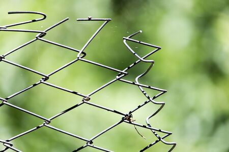 grille': Rusty metal grille fence macro and nature background