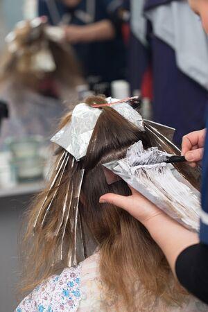 salon de belleza: pelo de la armadura en salón de belleza