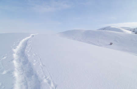 snowbank: Trail in the snow in the mountains
