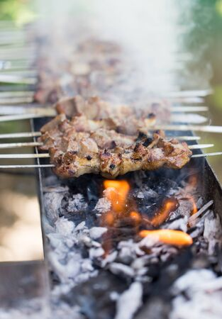 broiling: Barbecue on the grill