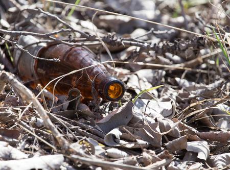 needless: Glass bottles in nature. trash