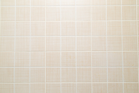tiled wall: background of a tiled wall