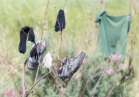 wet clothes: wet clothes to dry on the branches Foto de archivo