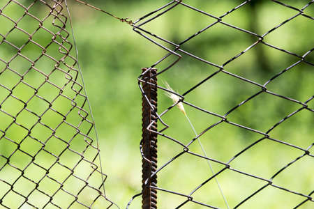 enclose: wire mesh fence on nature Stock Photo