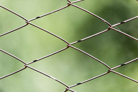 detain: wire mesh fence on nature Stock Photo