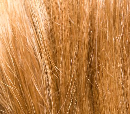 blond streaks: background of hair