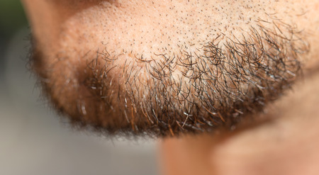 straggly: hair on a mans beard. close Stock Photo