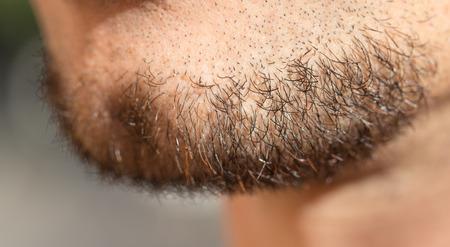 smoothfaced: hair on a mans beard. close Stock Photo