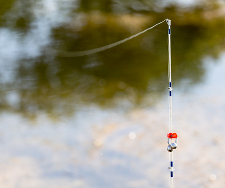 tench: rod on a river in nature