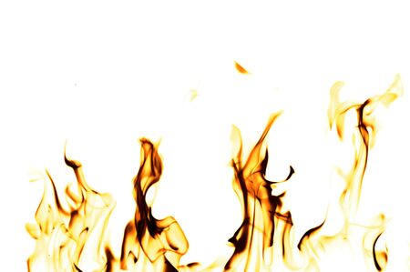 flame background: Fire flames on a white background