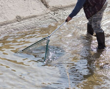 gulp: fishing with a net in the river