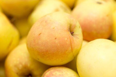 juicy: ripe juicy apples as background