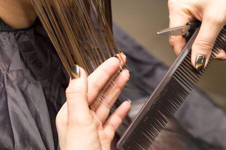 haircutting: Female hair cutting scissors in a beauty salon