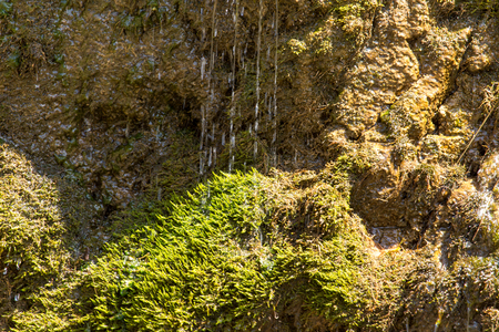 springwater: water from a spring in the mountains