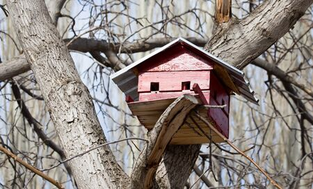 birdhouse on a tree outdoors