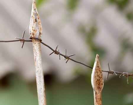 rusty: rusty fence