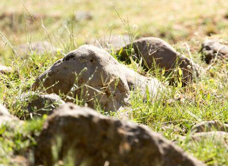 fengshui: Stone Mountain Stock Photo