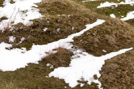 snow ground: snow on the ground in nature