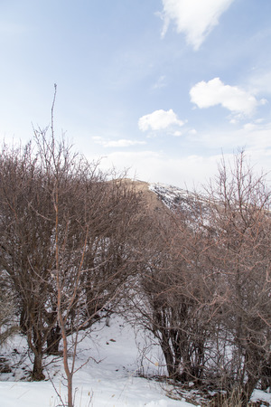 tien shan: Nature in the Tien Shan mountains in winter. Kazakhstan Stock Photo