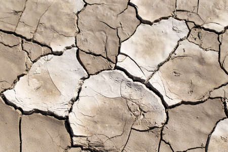cracked earth: cracked earth as a background. texture