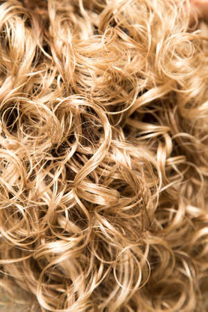 blonde streaks: wavy hair as background. texture