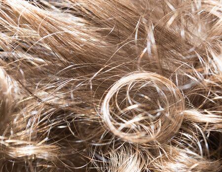 lock of hair: human hair as a background. texture