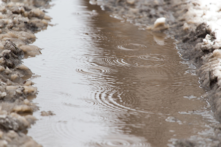 winter thaw: puddles from the rain in winter