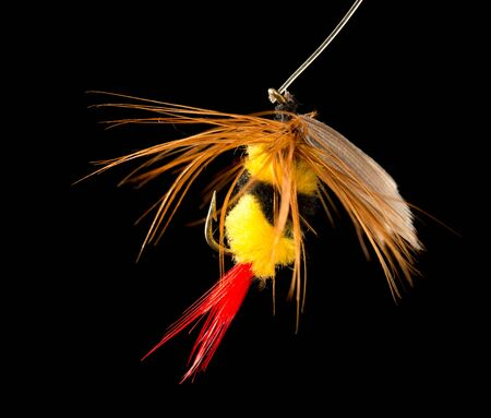 fly to catch fish on a black background