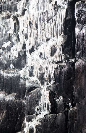 burnt wood: background of burnt wood