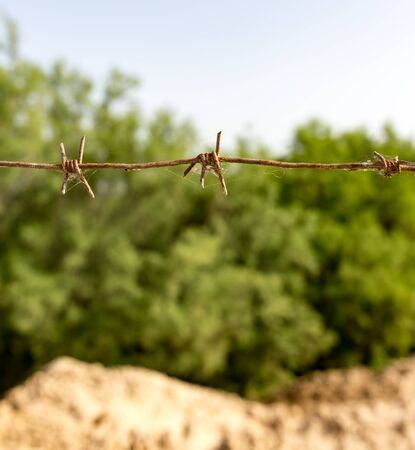 cattle wire: barbed wire fence in the nature